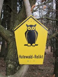 Heidenrod_Zorn_Hudewald
